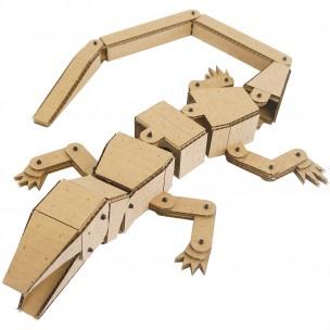 Lizard Kit