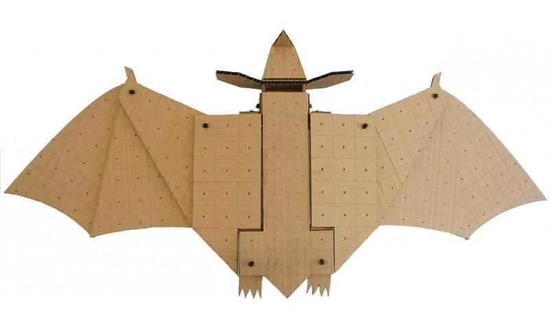 Bat Kit