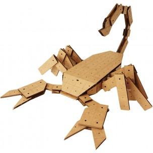 Scorpion Kit